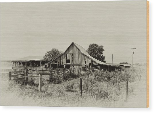 Puckerbrush Rd Barn  Wood Print