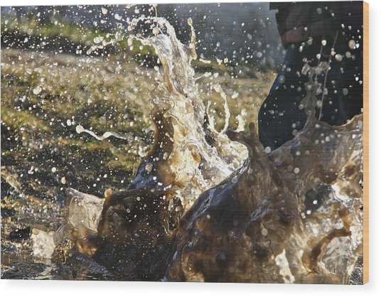Puddle Jumping Wood Print by Darren Edwards