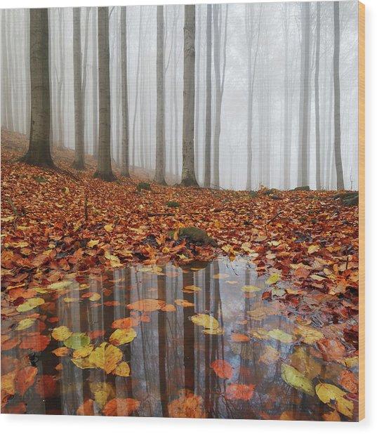 Puddle Wood Print