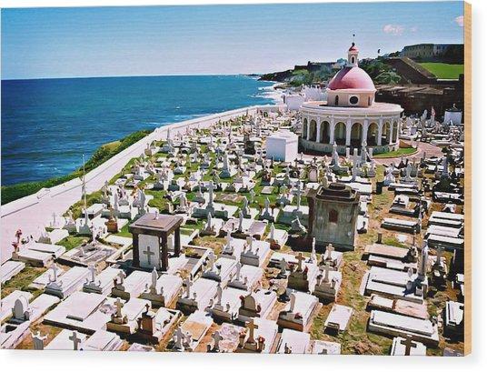 Puerto Rican Cemetery Wood Print