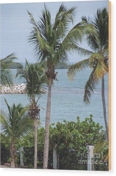 Puerto Rico IIi Wood Print