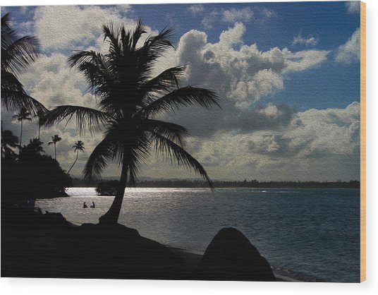 Puerto Rico Palm Tree Silhouette  Wood Print