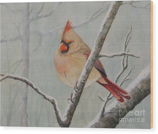 Puffed Up For Winters Wind Wood Print