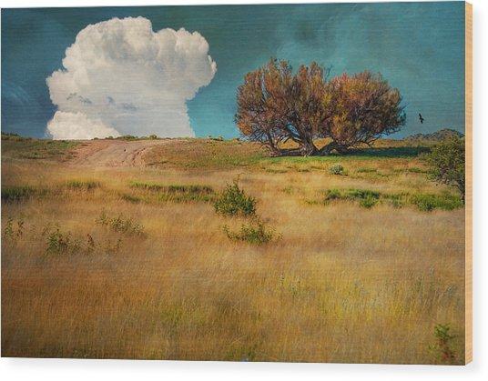 Puffy Cloud Wood Print