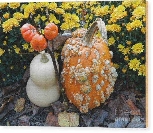 Pumpkin And Squash Wood Print