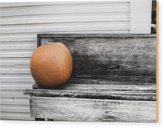 Pumpkin On A Bench Wood Print by Audreen Gieger