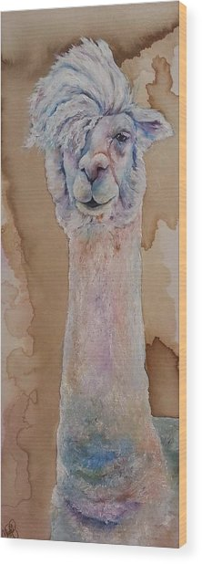 Punk Rock Alpaca Wood Print
