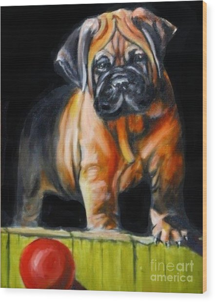 Puppy And Her Red Ball Wood Print