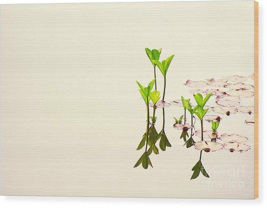 Pure Water Wood Print