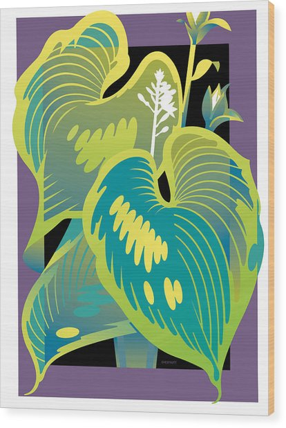 Purple-black Hosta Wood Print