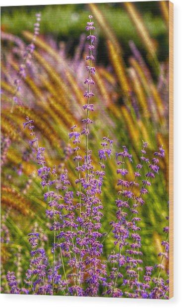 Purple Blooms Wood Print by Kathi Isserman