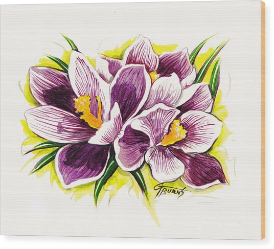 Purple Crocus Watercolor Wood Print by GG Burns