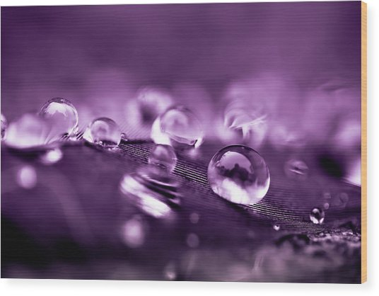 Purple Droplets Wood Print