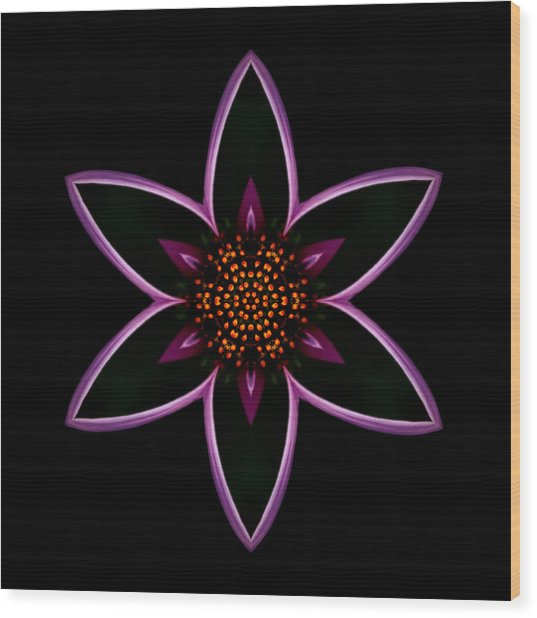 Purple Echinacea Flower Mandala Wood Print
