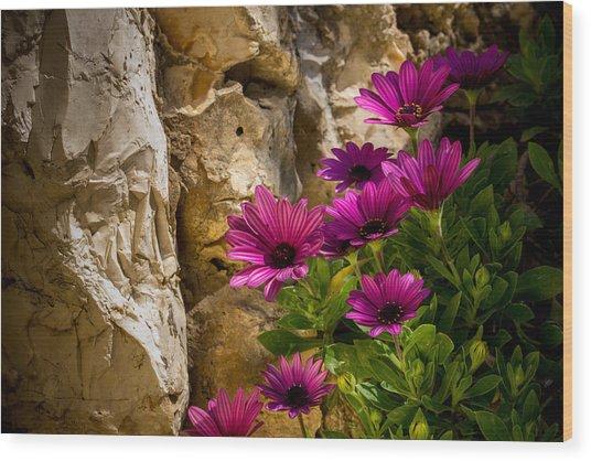Purple Flowers And Rocks Wood Print