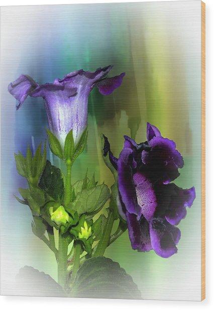 Purple Gloxinia II Wood Print