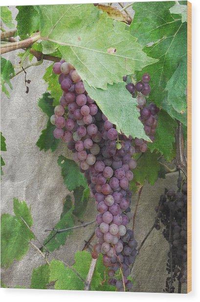Purple Grapes On The Vine Wood Print