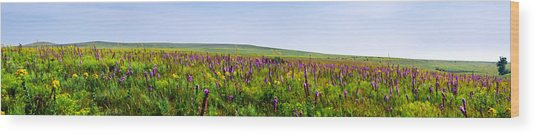 Purple Hills Wood Print