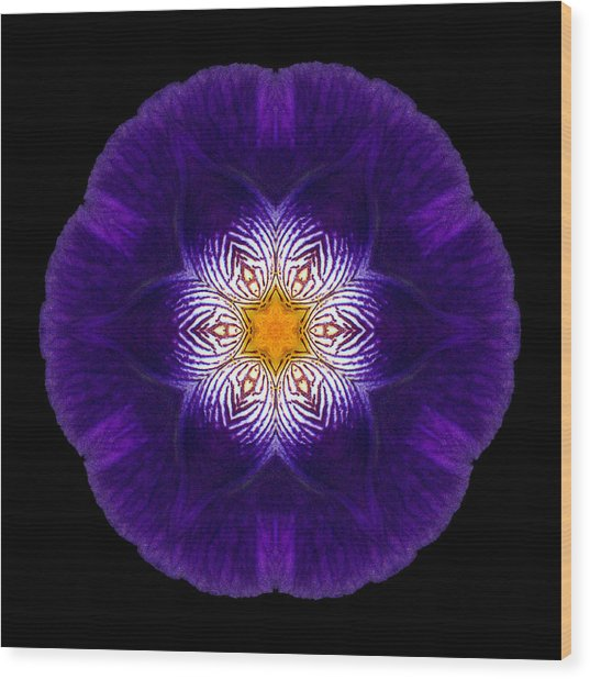 Purple Iris II Flower Mandala Wood Print