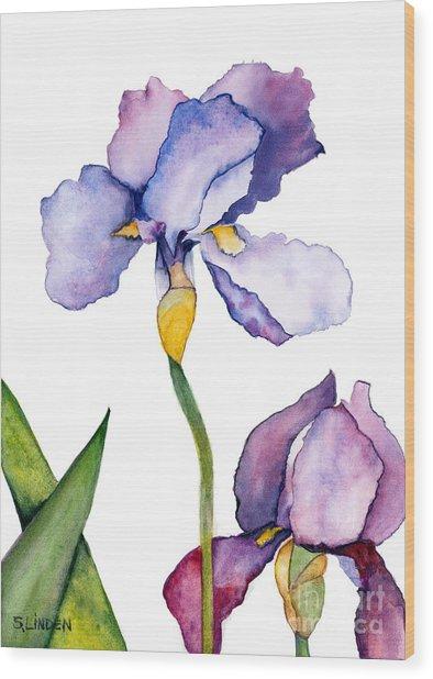 Purple Iris Leaning Toward The Sun Wood Print by Sandy Linden