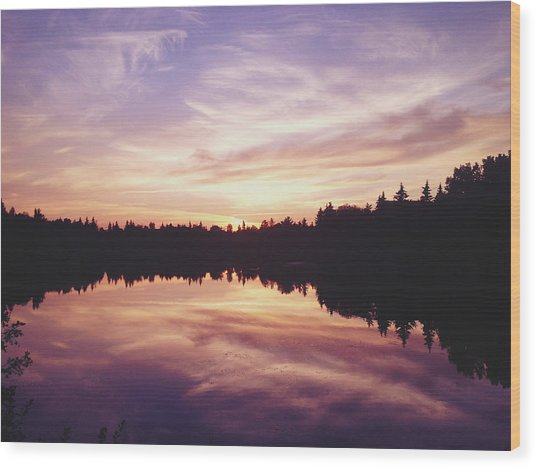 Purple Night Wood Print by Larysa  Luciw
