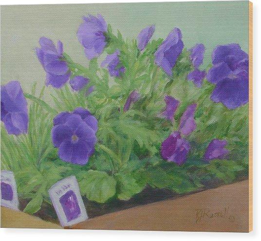 Purple Pansies Colorful Original Oil Painting Flower Garden Art  Wood Print