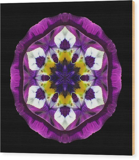 Purple Pansy II Flower Mandala Wood Print