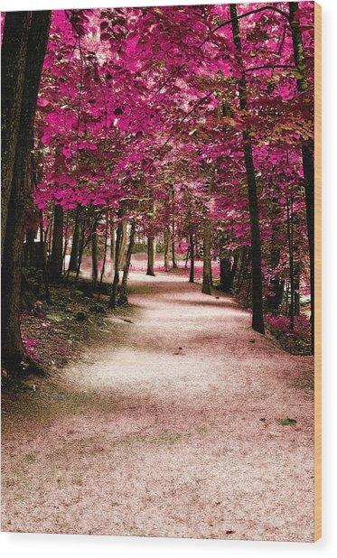 Purple Pass Wood Print