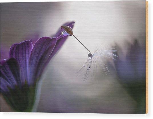 Purple Rain Wood Print by Silvia Spedicato