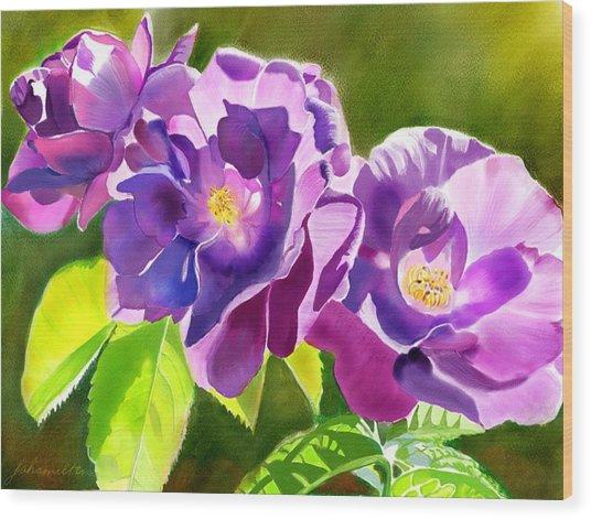 Purple Roses Wood Print by Joan A Hamilton
