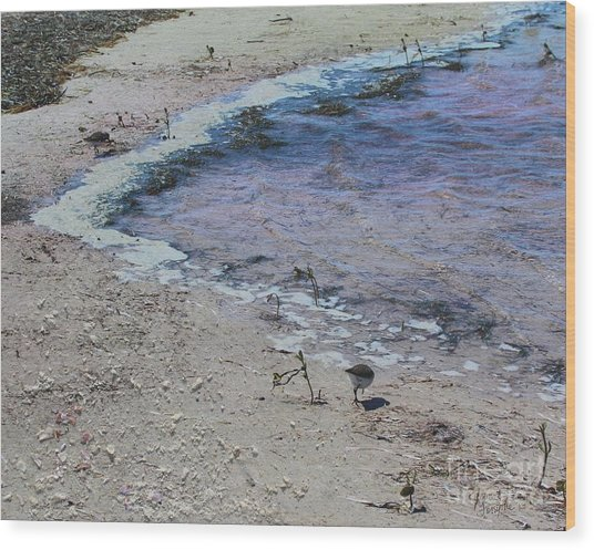Purple Waters With Sand Wood Print