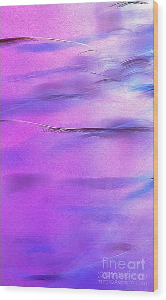 Purple Wave Wood Print by JCYoung MacroXscape