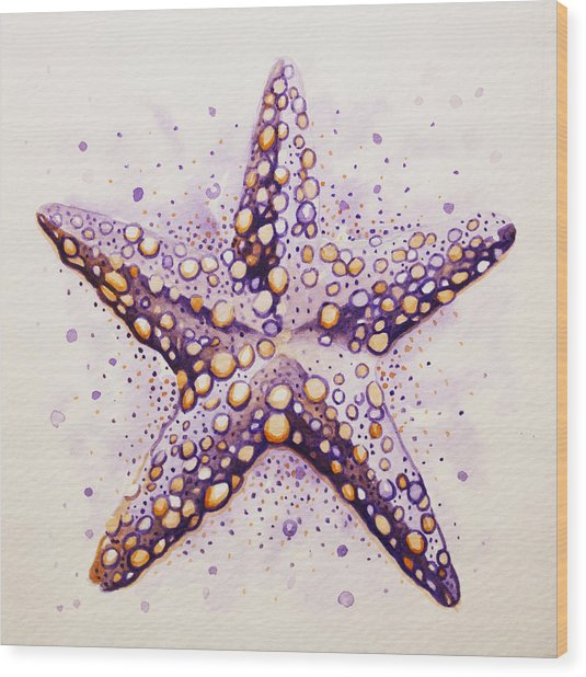 Purpura Starfish Wood Print