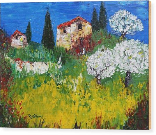 Pyrenees Farm  Wood Print