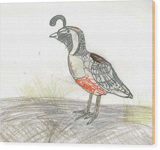 Quail Bird Wood Print by Ethan Chaupiz