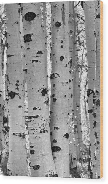 Quaking Aspen Zion National Park Wood Print