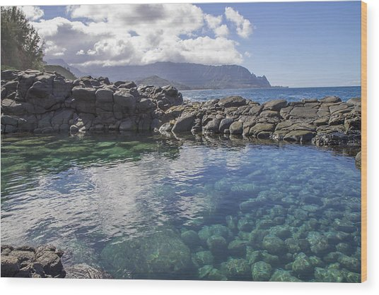 Queen's Bath Tide Pool Wood Print