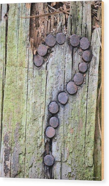Questions  Wood Print