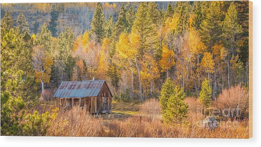 Quiet Cabin Wood Print by Charles Garcia