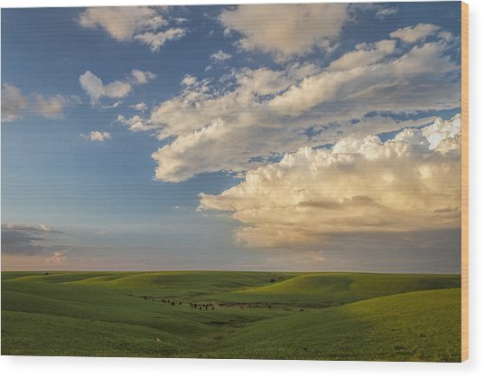 Quiet On The Prairie Wood Print