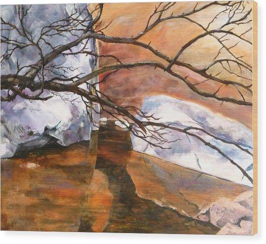 Quiet Reflection Wood Print