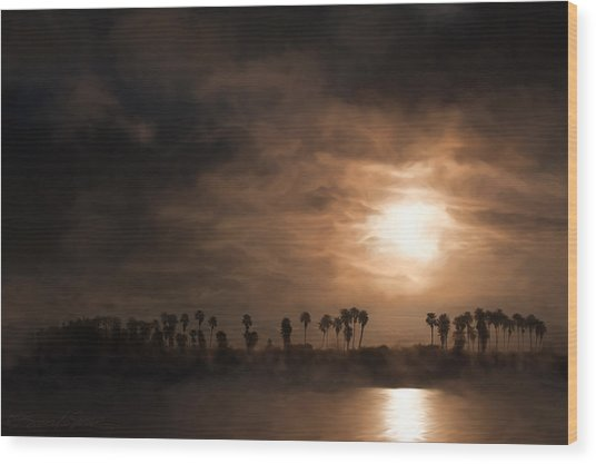 Quiet Sunrise With Fog And Palm Trees Wood Print