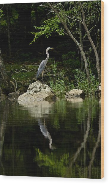 Quiet Waters Wood Print