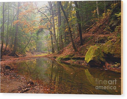Quiet Waters Wood Print