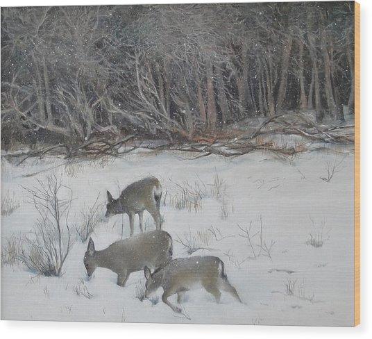Quiet Winter Day  Wood Print