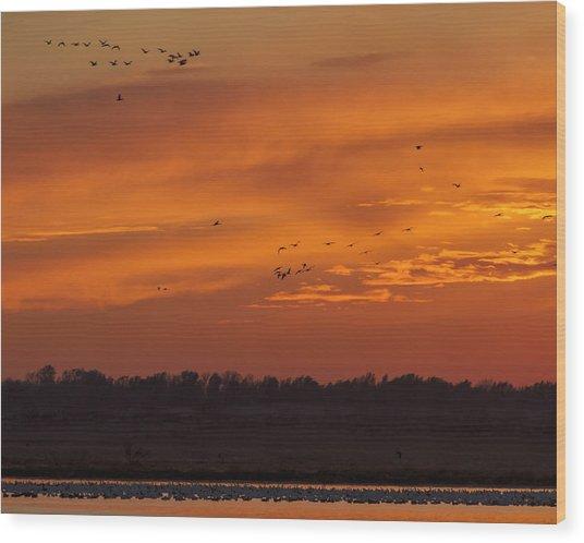 Quivira Sunset 1 Wood Print