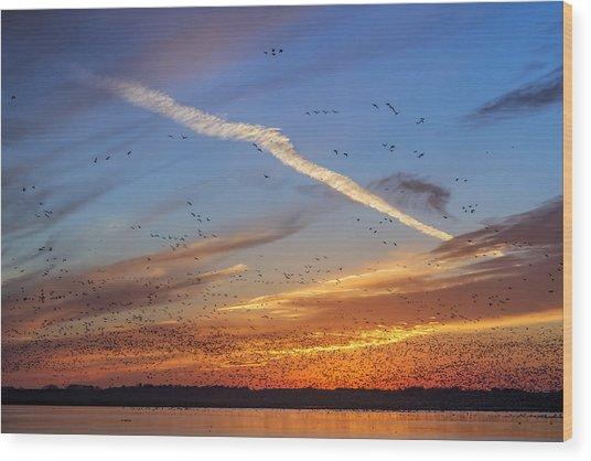 Quivira Sunset 2 Wood Print
