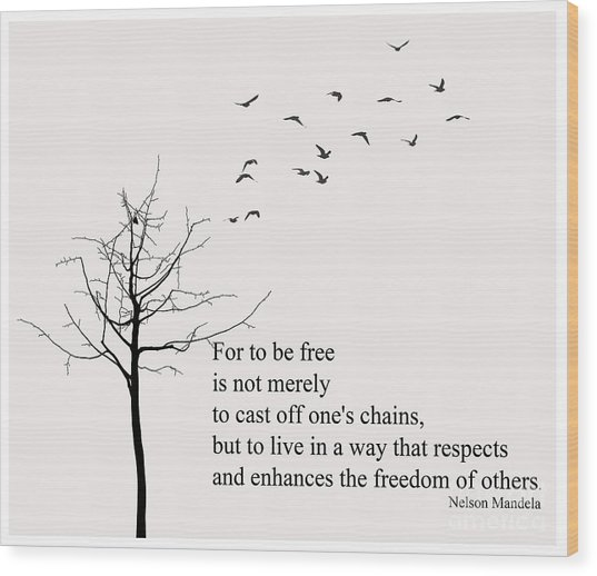Quote- Nelson Mandela Wood Print by Trilby Cole