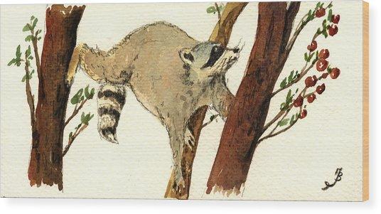 Raccoon On Tree Wood Print
