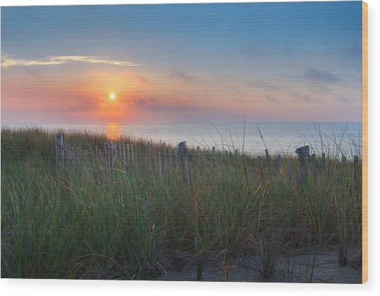 Race Point Sunset Wood Print
